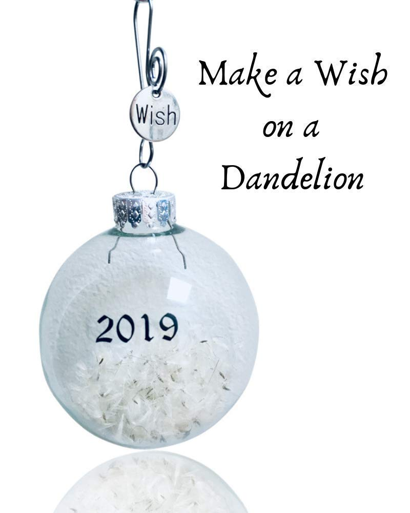 Birthday Wishes Dandelion Wishes Necklace Make a Wish on Dandelion Seeds in Hand Blown Glass Globe Card and Gift Box included By Dorinta