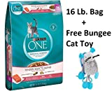 Purina ONE Tender Selects Blend With Real Salmon Dry Cat Food (Seafood, 6 - 16 lb Bag + Free Toy)