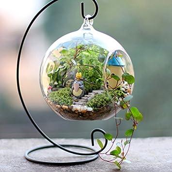 Weanty Plante Vase En Verre Fer Suspendus Support /À La Maison Jardin D/écoration De Mariage Bougeoir Chandelier Boule De Verre Lanterne /À Suspendre 10 pi/èces