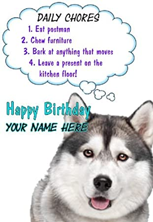 6c6c69ada09 Siberian Husky Dog Birthday Rules Card Codehy Greeting Card Personalised   Amazon.co.uk  Office Products