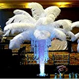 Great Value 10pcs 12-14'' Wholesale Natural Ostrich Feathers Bulk Plume for Wedding Centerpieces Home Decoration White ostrich feathers, perfect for hat and fascinator making