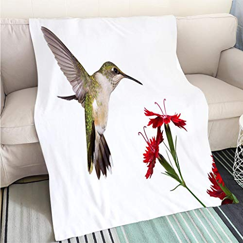 Custom homelife Abstract Home Decor Printing Blanket Hummingbird and Three Dianthus Perfect for Couch Sofa or Bed Cool Quilt ()