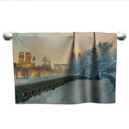 alisoso Winter,Wash Towels Central Park Winter Skyscrapers and Snow Bow Bridge Manhattan New York Microfiber Towels for Body Orange White Olive Green W 20