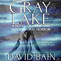 Gray Lake: A Novel of Crime and Supernatural Horror Audiobook by David Bain Narrated by James Foster