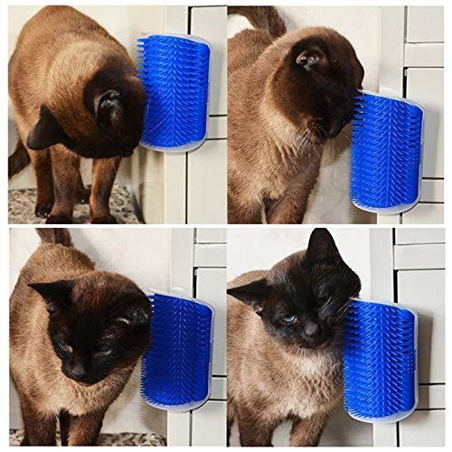 GFYT Pet Brush Massage Cat Kitten Self Groomer with Catnip Pet Puppy Cat Scratcher Toys Fur Grooming Interactive Cat Kitten Toys by GFYT