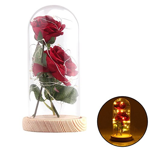 Wefond Preserved Flowers Red Silk Rose in Glass Dome with LED Lights Decor and Wooden Base Immortal Flower for Home Display DIY Present for Wedding, Anniversary, Birthday
