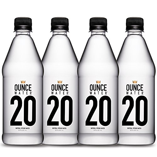 Daypack Spring - Ounce Water Natural Spring Water Bottle 4 Piece Day Pack, 20 Ounce