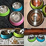Dog Bowl Drinking Water Fountain Dry Food Bowls for