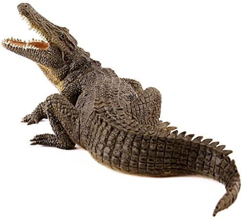 Amazon.com: Nile Crocodile: Toys & Games