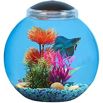 Koller products bettatank 3 gallon fish bowl for Betta fish light