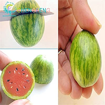 Thumb watermelon seeds mini watermelon Peipujinun 30pcs/bag vegetable seeds indoor plant Thumb watermelon seeds mini watermelon : Garden & Outdoor