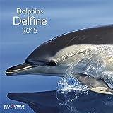 Delfine 2015 A&I