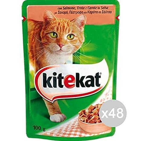 Kitekat Juego 48 Gato Sobre 100 Salmón Comida para Gatos: Amazon.es: Productos para mascotas