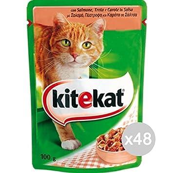 Kitekat Juego 48 Gato sobre 100 Salmón Comida para Gatos ...