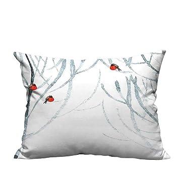 Amazon.com: YouXianHome - Fundas de almohada con cremallera ...