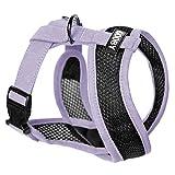 Gooby Choke Free Active X Head-In Synthetic Lambskin Soft Harness Small Dogs, Purple, Medium
