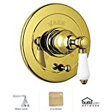 Rohl A7400LHIB Country Bath Trim Kit for Pressure Balance with Integrated Volume Control with Hex Metal Lever & Diverter, Inca Brass