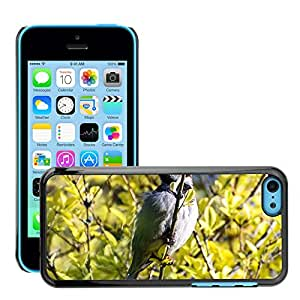 GoGoMobile Slim Protector Hard Shell Cover Case // M00125039 Bird Animal Aviator Summer Nature // Apple iPhone 5C