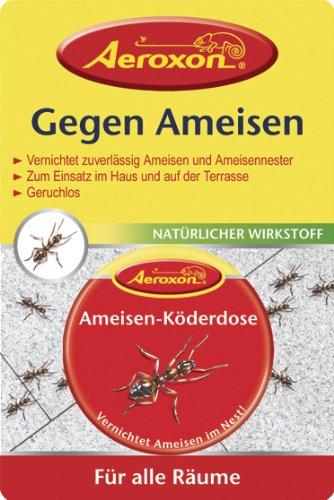 hilfe gegen ameisen in der wohnung? hilft essigreiniger? - Was Tun Gegen Ameisen In Der Küche