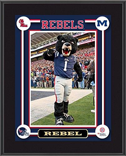 Ole Miss Rebels Rebel Black Bear 10.5