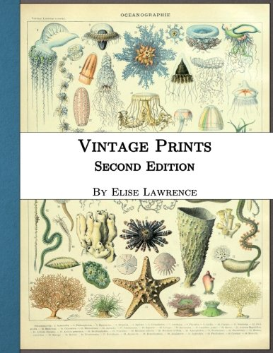 Vintage Prints: Second Edition