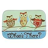 Owl Bathroom Mat Area Rug,GOODCULLER Colorful Door Kitchen Carpets Memory Foam Bathroom Absorbent Non-slip Mat Floor Mats Rugs Carpet Home Decor (owl)