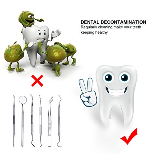 Dental Scraper,TANTAI Dental Pick Hygiene Kit Set- 6 Pack,100% Medical Stainless Steel,Tooth Stains Scraper Remover,Tweezers Dental Gum Floss for Personal or Pet Oral Care Use by TANTAI (Image #4)