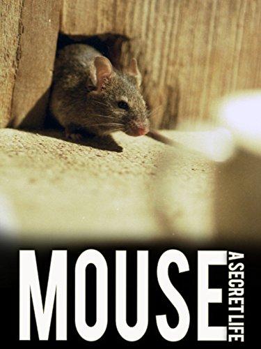 Mouse: A Secret Life