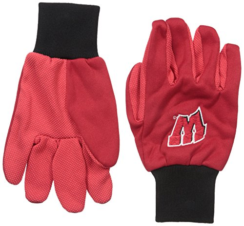 Wisconsin 2015 Utility Glove - Colored Palm
