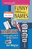 Funny Thing about Names, Jim Wegryn, 0595346820