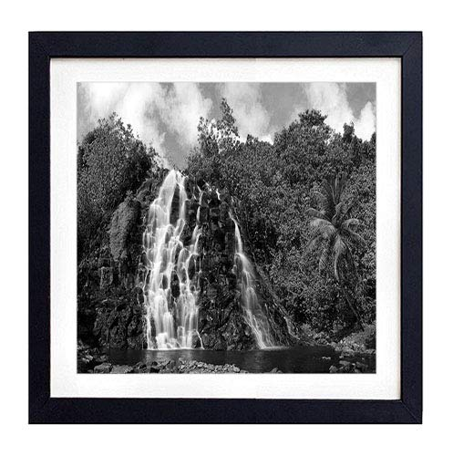 GLITZFAS PRINTS Framed Wall Art- Falls Stones Trees Palm Tree Cascades Equator- Art Print Black Wood Framed Wall Art Picture for Home Decoration - Black and White 16