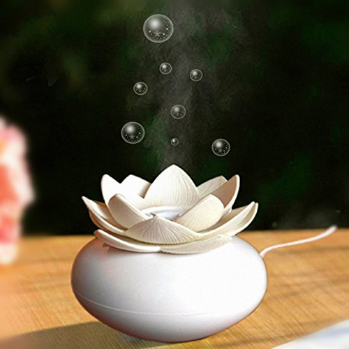 Dealetech Mini Humidifier USB Office Lotus Shape Air Humidifier Light Mini USB Home Air Humidifier Negative lon Air Purifier (white)