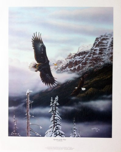 Bald Eagle Nature Animal Art. Spirits of the Free by Rick Kelley (25