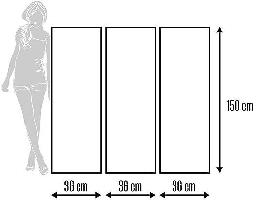 Feeby Frames Paravent d/éco Chat Impression 1 Face 3 Panneaux Noir 110x150 cm
