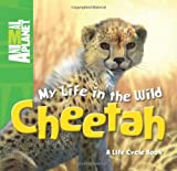 My Life in the Wild: Cheetah, Phil Whitfield and Animal Planet Staff, 0753467259