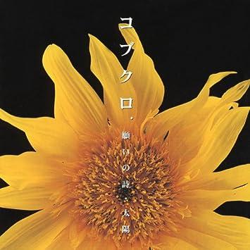 Amazon | 願いの詩/太陽 | コブ...