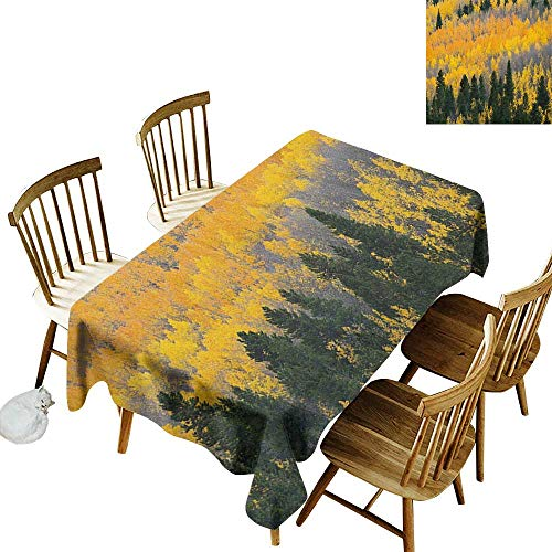 kangkaishi Easy to Care for Leakproof and Durable Long tablecloths Outdoor Picnic Colorful Aspen Forest in Colorado Rocky Mountains Western Wilderness USA Theme W54 x L108 Inch Green Yellow ()