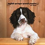 English Springer Spaniel Puppies 2007 Mini Calendar