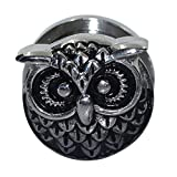 Longbeauty 1Piece Stainless Steel Owl Ear Gauges Ear Plugs Flesh Tunnels Screw Stretcher Piercing 10MM