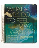 img - for The Desire Map Planner from Danielle LaPorte 2018 Daily (Teals & Gold) book / textbook / text book