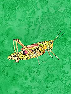 Grasshopper en bandera de color verde, tela, multicolor, S