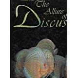 The Allure of Discus
