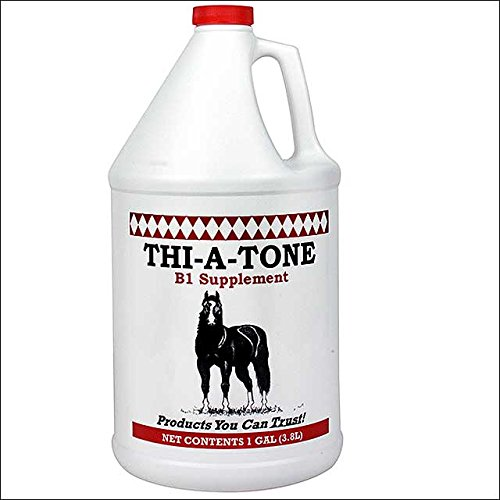 THI A TONE B1 SUPPLEMENT HORSES OF ALL AGES IN NEED STRESSFUL SITUATIONS GALLON by THI A TONE