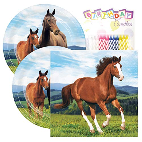 Horse and Pony Birthday Party Pack - Includes 7
