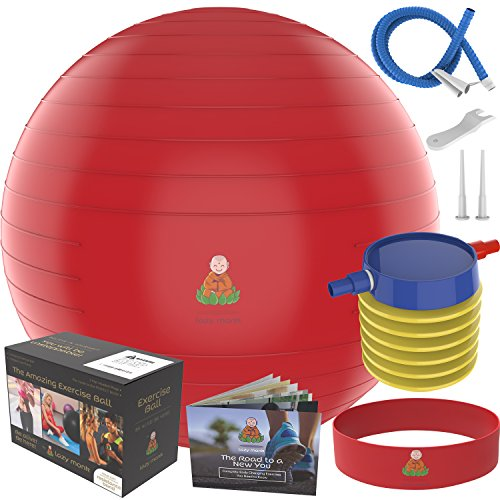 Exercise Ball Stability Fitness Balls | Best Professional Balance Anti-Burst Set – Yoga Large Thick Gym Ball With Pump & Accessories, Extra Pin For Valve, Elastic Loop & Hard Cover Workout Guide…