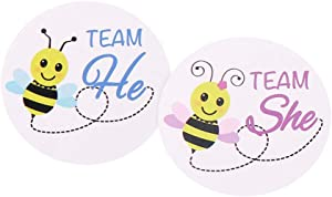 Gender Reveal Party Supplies Idea | 60 Pack - Bee Themed Gender Reveal Stickers Games Team Boy or Team Girl | Baby Reveal Decor