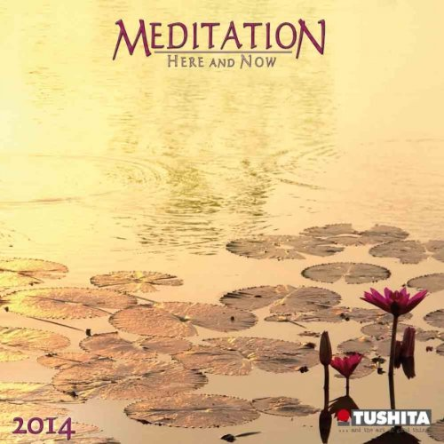 Meditation - Here and Now 2014 Mini Calendar (Mini Calendars) (Mindful Editions)