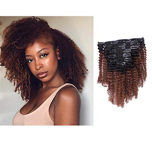 Anrosa Afro Kinky Curly Clip in Hair Extensions Human Hair Afro Kinky Clip ins Virgin Brazilian Hair Extensions for Black Women Natural Curly Clip ons 3C 4A 4B Hair Ombre Dark Brown Color 120g 14 Inch
