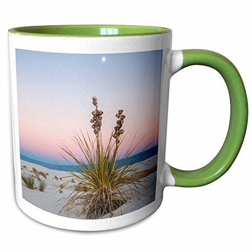 3dRose Danita Delimont - Deserts - USA, New Mexico, White Sands National Monument. Moon over yucca plant. - 15oz Two-Tone Green Mug (mug_207287_12) ()