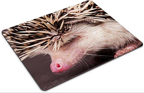 Mousepads hedgehog IMAGE 21489318 by MSD Mat Customized Desktop Laptop Gaming Mouse Pad